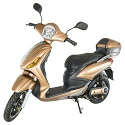 e-Scooter, Gold & Silver